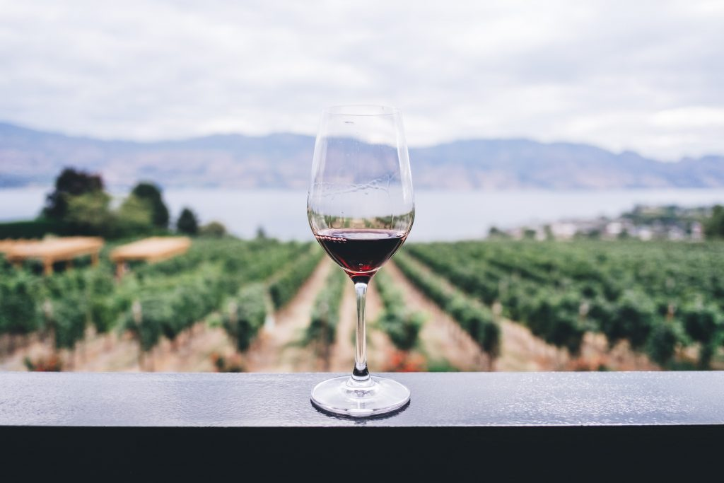 clubes de assinatura de vinhos
